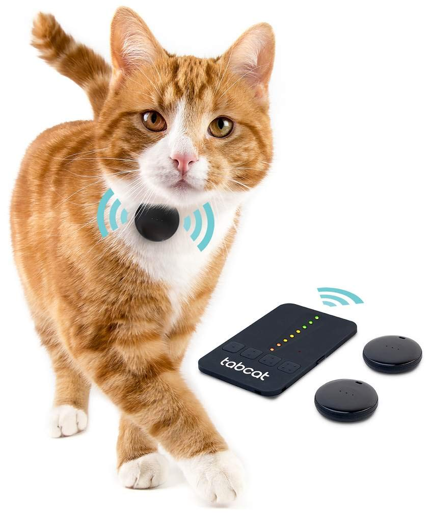 Pet Gadgets - Top 5 4